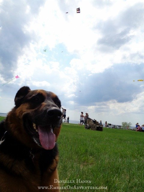 Molly and kites